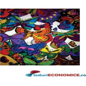 Set postere de colorat + 12 markere duble