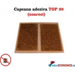 Placa adeziva pentru capturarea soarecilor TOP09