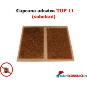 Placa adeziva impotriva sobolanilor TOP11
